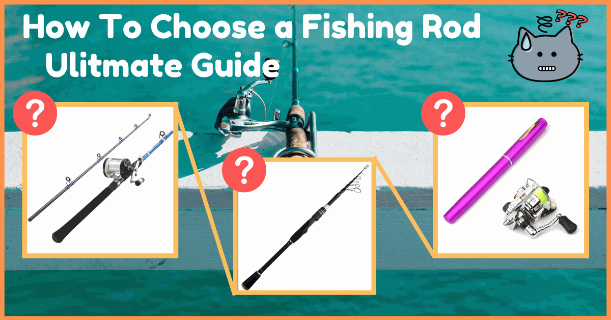 How To Choose a Fishing Rod: Ulitmate Guide