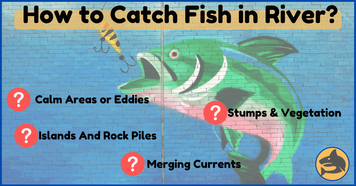 How to Catch Fish in River?