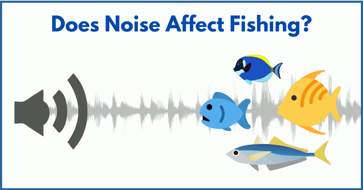 Does Noise Affect Fishing?